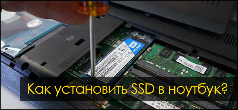 как установить SSD в ноутбук